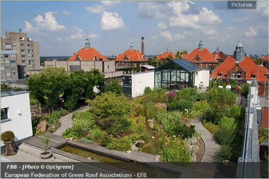 Les toitures v g tales les jardins suspendus d aujourd - Les jardins de babylone ...
